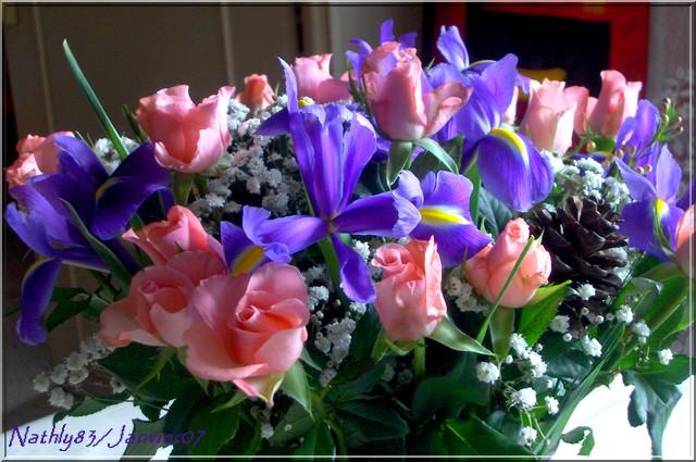 bouquetdejanvier07009.jpg