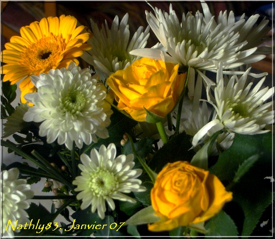 bouquetdejanvier07015.jpg