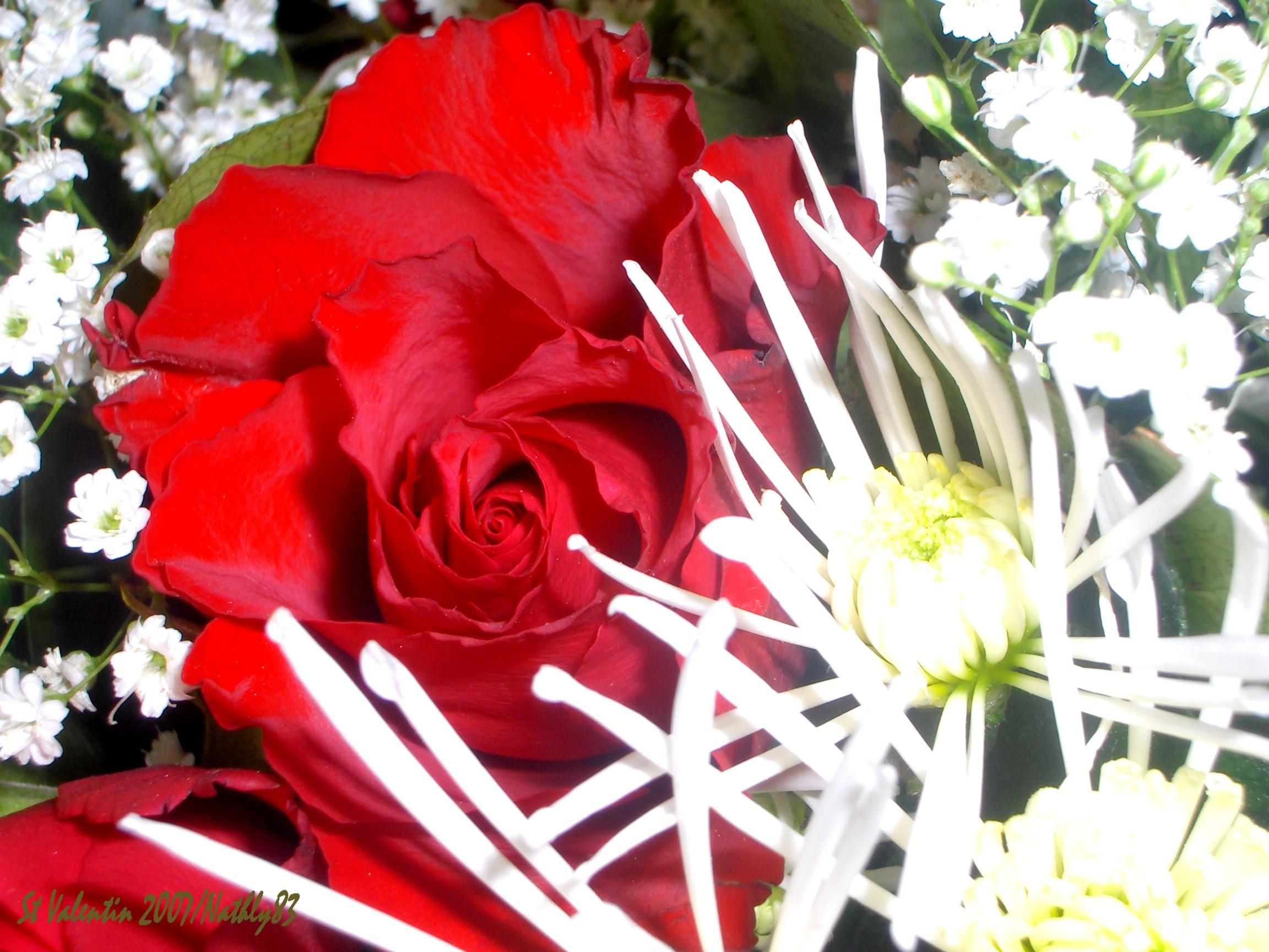 Bouquet de st valentin